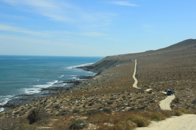 Winding beach road in Baja